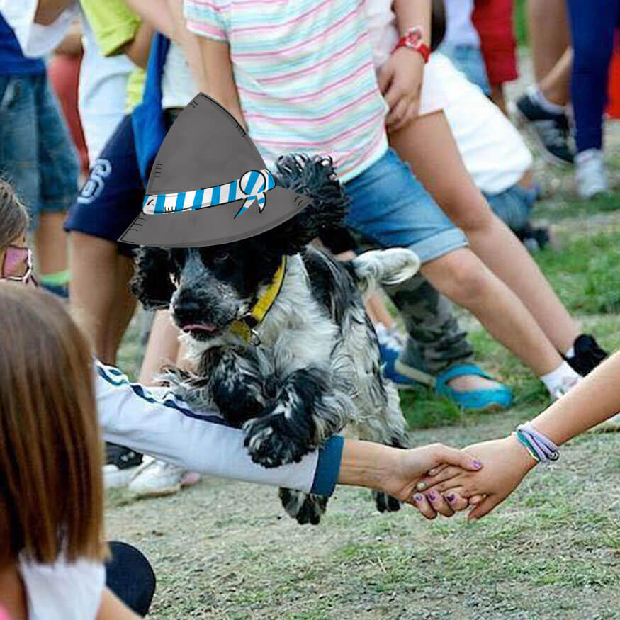dogtoberfest-okge-2017-4